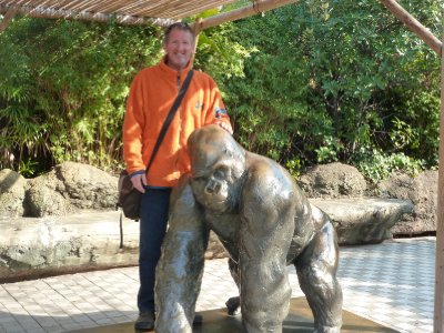 No pandas at Ueno Zoo, but plenty of Gorillas