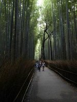 large_20c_Kyoto_013.jpg