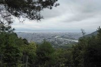 large_20c_Kyoto_014.jpg