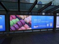 large_Shanghai_017.jpg