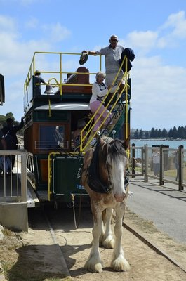 2017 Mar 28 Wendy and John on Victor Harbour horse tram (Copy)