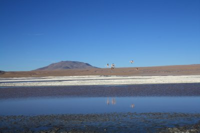 Lagoons and the landscape