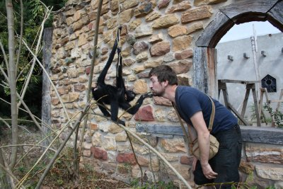 Henrik and the Spidermonkey really got along