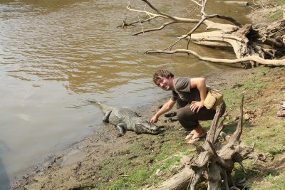 we didn't see any anaconda but Henrik got to touch an aligator