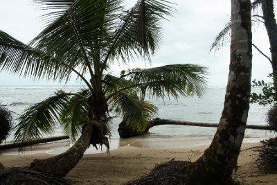 Beach in nature reserve near Cauita
