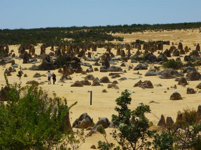the Pinnacles desert park