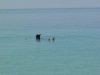 swimming at Monkey Mia - is it a lake?