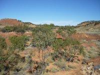 Lark Quarry dinosaur site