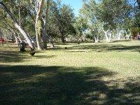 picnic park at Lake Moondarra