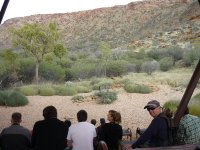 birds of prey show at Desert Park
