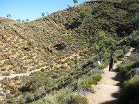 walk to lookout Ormiston gorge