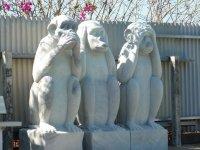 3 wise monkeys at fish feeding