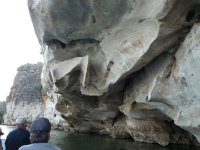 part of the devonian reef at Geike gorge