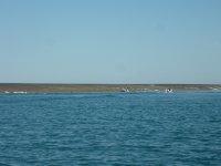 start of Montgomery reef excursion