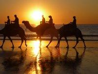 beach sunset ride