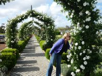 smelling the roses at Voyager estate winery