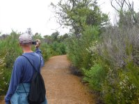 walk through the heathlands