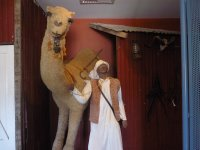 museum honouring the camels and Afghans used for transport in the Nullarbor