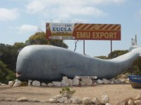 welcome to Eucla - check out the kms to Perth and Adelaide