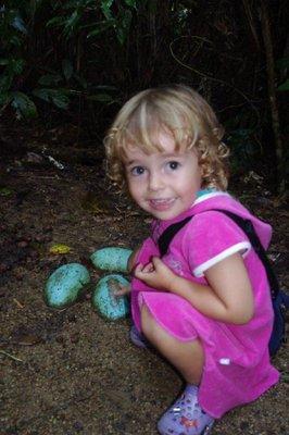 Nadia found some cassowary eggs