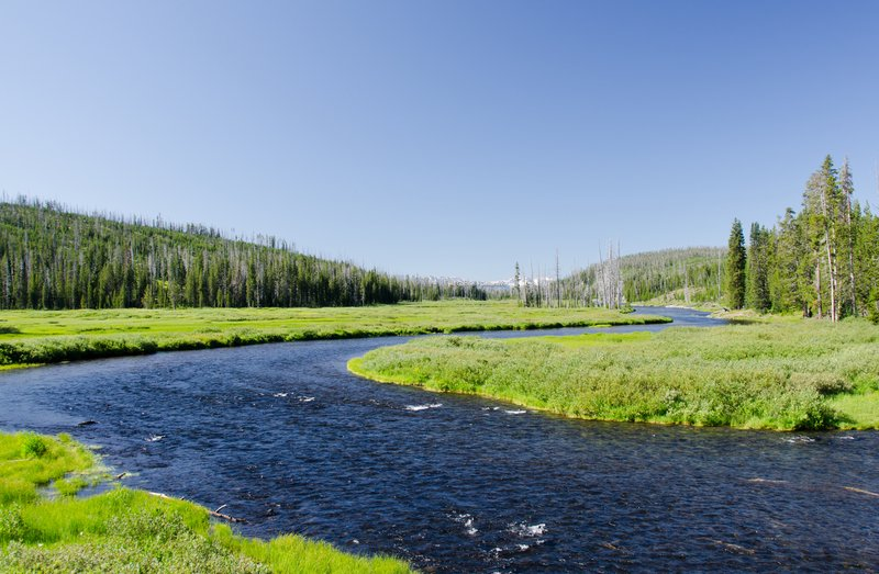 The Snake River meandering through Yellowstone National Park