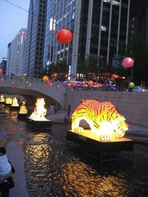 river paper lanterns