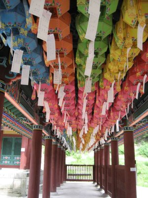 lots and lots of lanterns with names