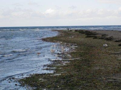 Poel Beach #2