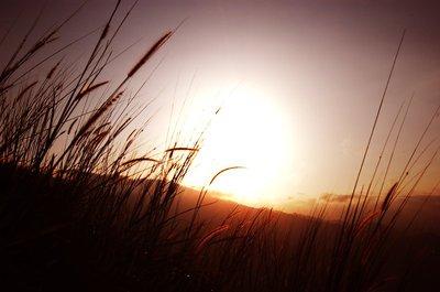 Sunrise over Broga Hill