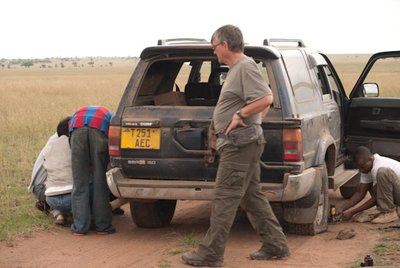 1005_Serengeti_0343.jpg
