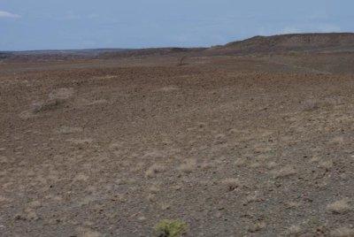 1006_Kal-Turkana_0130.jpg