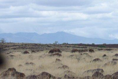 1006_Kal-Turkana_0202.jpg