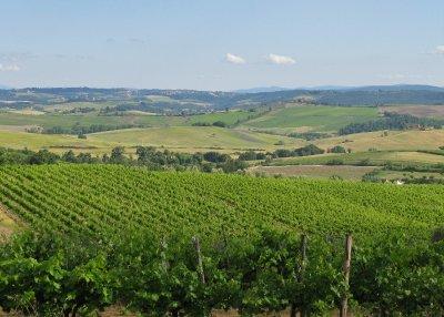 Rocca della Macie winery, Chianti region