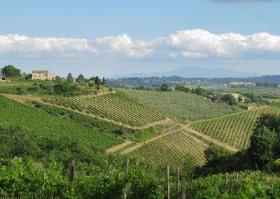 Chianti region - view from Rocca della Macie winery