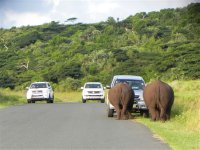 South_Africa_019.jpg