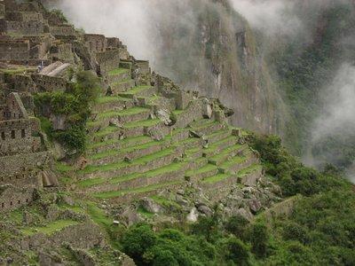 INC_D4 - Terraces with llamas
