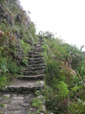 INC_D4 - More steep steps