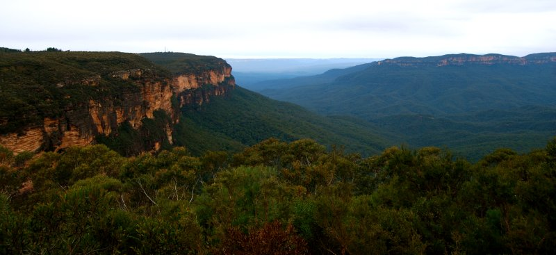 Blue Mountains II