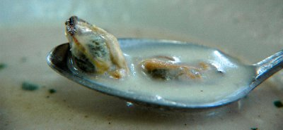 2012_Hudson_CopakeSpoon_1.jpg