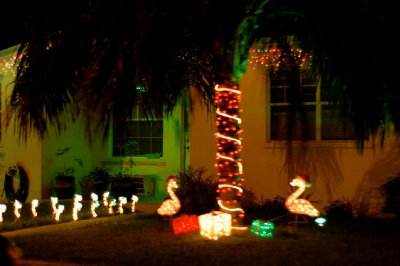 2012_Xmas_KW_lightour_06.jpg