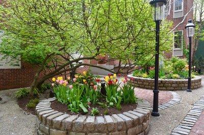 2015_Philly_gardens_-_6.jpg