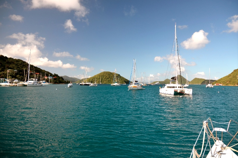 large_2013_BVI-Aristocat_05.jpg