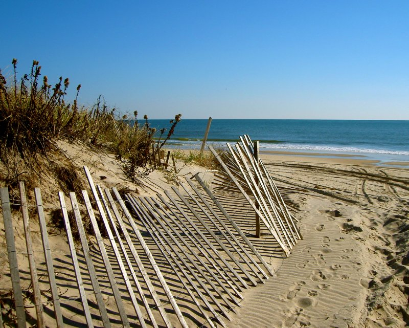 large_beachfence.jpg