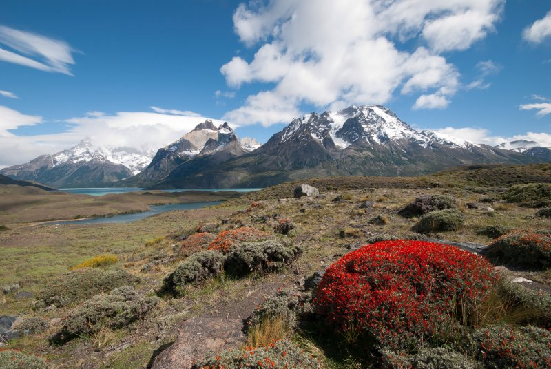 Our first views of Torres del Paine