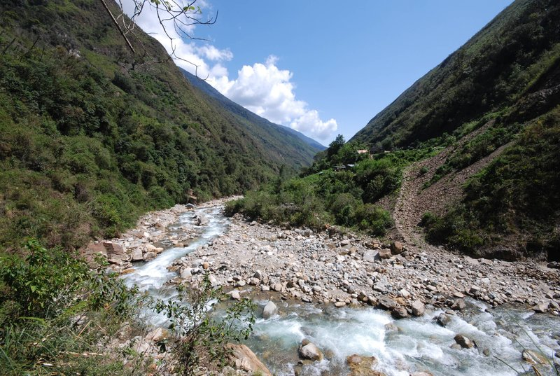 Following the river through dense jungle