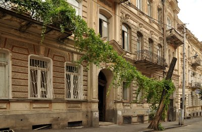 Tbilisi balcony with vines