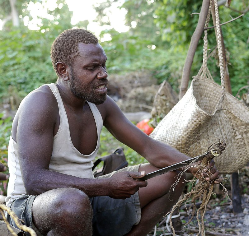 making kava traditional way