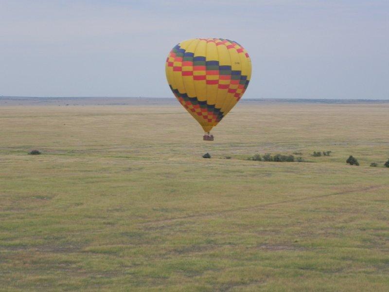 masai Mara Migration 012