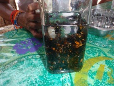 Bee whiskey