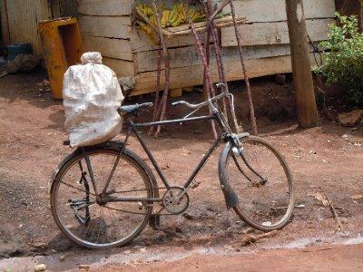 Bike Carrying Charcoal